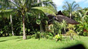 Bungalow MANAHAU coté piscine