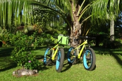 Ballade à vélo sur Taravao en location saisonnière